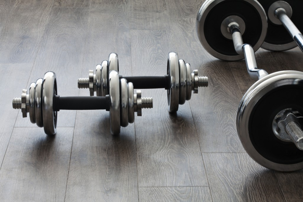 barbells and dumbbells perpendicular to each other